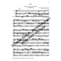 Bach, J. S. - Trio nach BWV 525