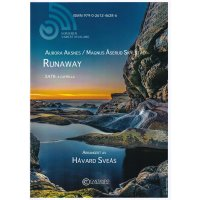 Aksnes/Skylstad - Runaway
