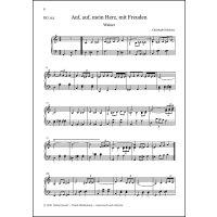 Brückner, Christoph - Heitere Orgelmusik