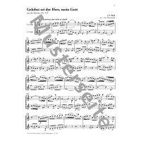 Bach, J.S. - Schwingt freudig euch empor